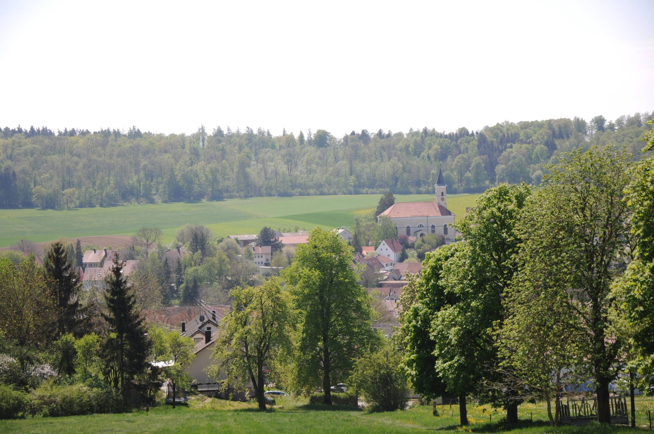 Ausblick nach Zöschingen in Richtung St. Martin ©V.Gäbke